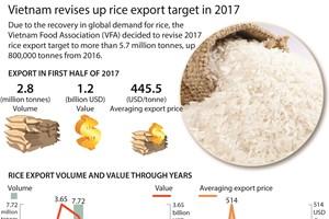 Vietnam revises up rice export target in 2017