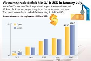 Vietnam's trade deficit hits 3.1 bln USD in Jan-Jun