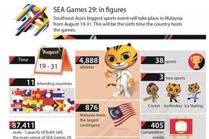 SEA Games 29 in figures