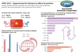 APEC 2017 – Opportunity for Vietnam to affirm its position