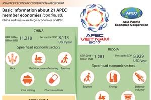 APEC 2017: Basic information about 21 APEC economies (continued)