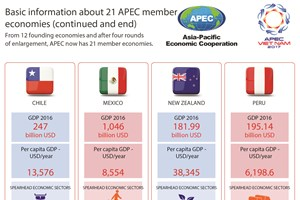 Basic information about 21 APEC member economies (end)