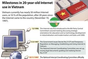 Milestones in 20-year-old Internet use in Vietnam