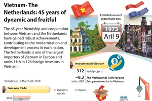 Vietnam-Netherlands: 45 years of dynamic and fruitful relations