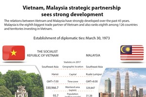 Vietnam, Malaysia strategic partnership sees strong development