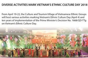 Diverse activities mark Vietnam's Ethnic Culture Day 2018