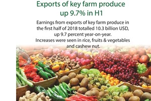 Exports of key farm produce up 9.7 percent in H1