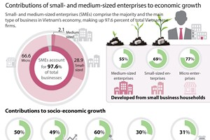 Majority of bussinesses being SMEs