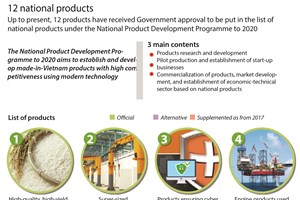 12 national products