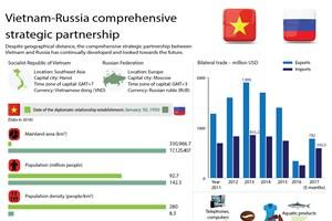 Vietnam-Russia comprehensive strategic partnership