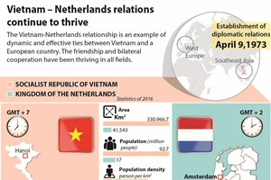 Vietnam – Netherlands relations continue to thrive