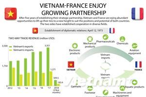 Vietnam-France enjoy growing partnership