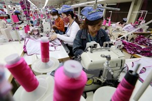 EP, Vietnam strives for EVFTA ratification in next nine months
