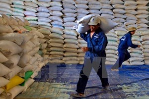 Cambodia exports over 400,000 tonnes of rice in nine months