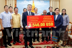 Overseas Vietnamese assist storm victims in Laos