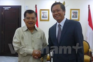 VN-Indonesia relationship contributes to ASEAN development: diplomat