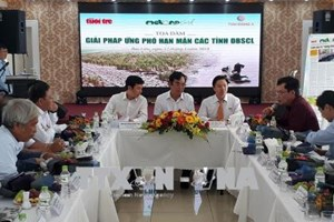 Solutions sought to drought, saline intrusion in Mekong Delta