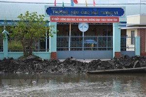 More capital to be poured into Mekong Delta to address erosions