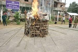 Drug-burning ceremonies mark World Drug Day in Southeast Asian