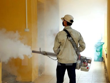 Preventive measures against dengue fever prove effective