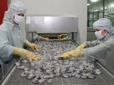 Seafood shipments to EU drop