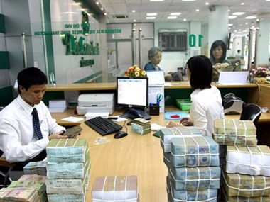 Multiple factors support exchange rate stability: SSI