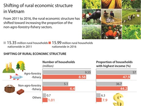 Shifting of rural economic structure in Vietnam