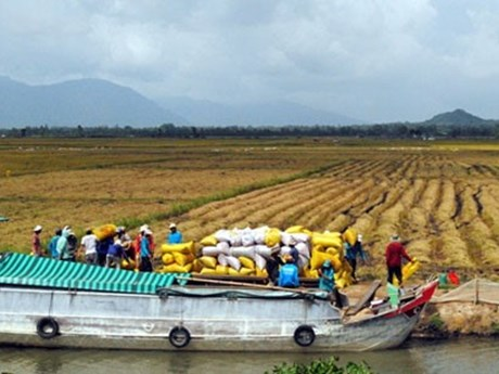 Mekong provinces link up on water management