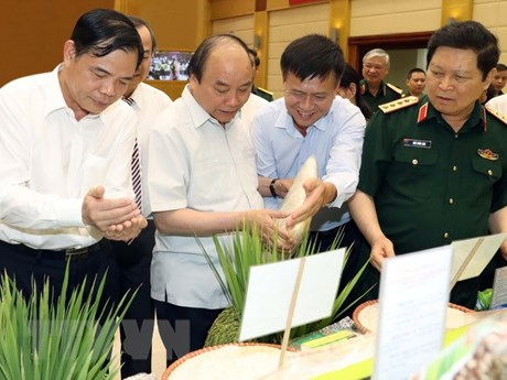 Project on agricultural modernisation proves effective: PM