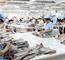Vietnam, RoK foster business connection